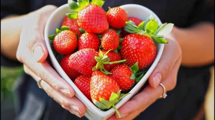 Fun Facts of Strawberries