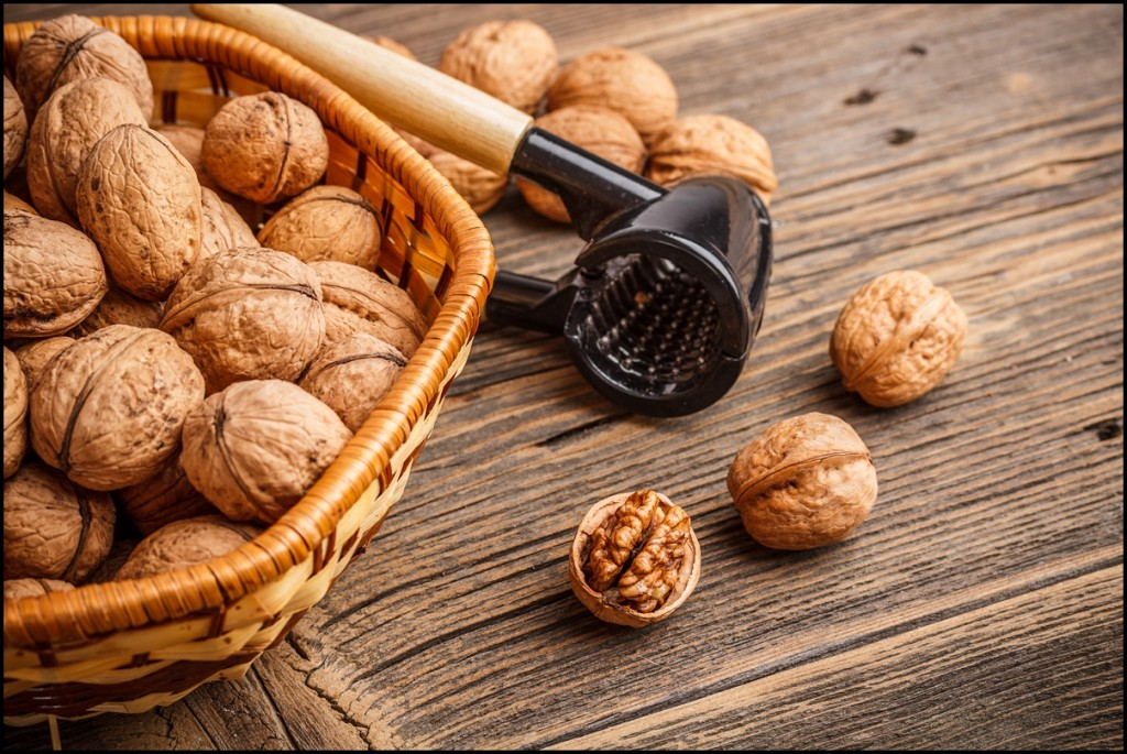 Fun Facts of Walnuts 2